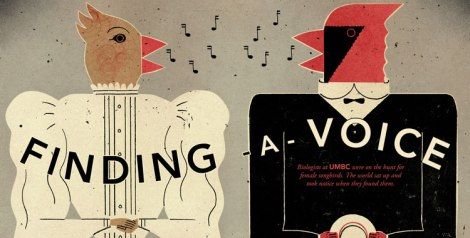 Finding a Voice Title Graphic